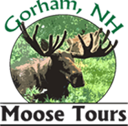 Gorham, NH Moose Tours