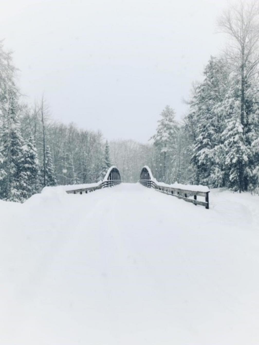 Multi-Modal Bridge in the Winter by Meag Porier
